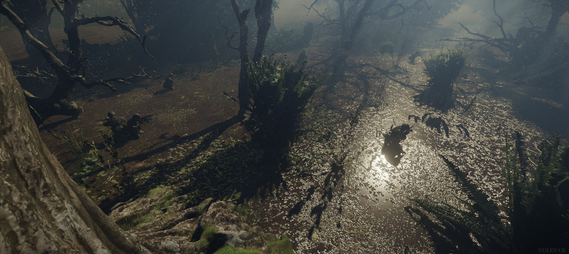 Swamp—Shot-05—Volen-CK